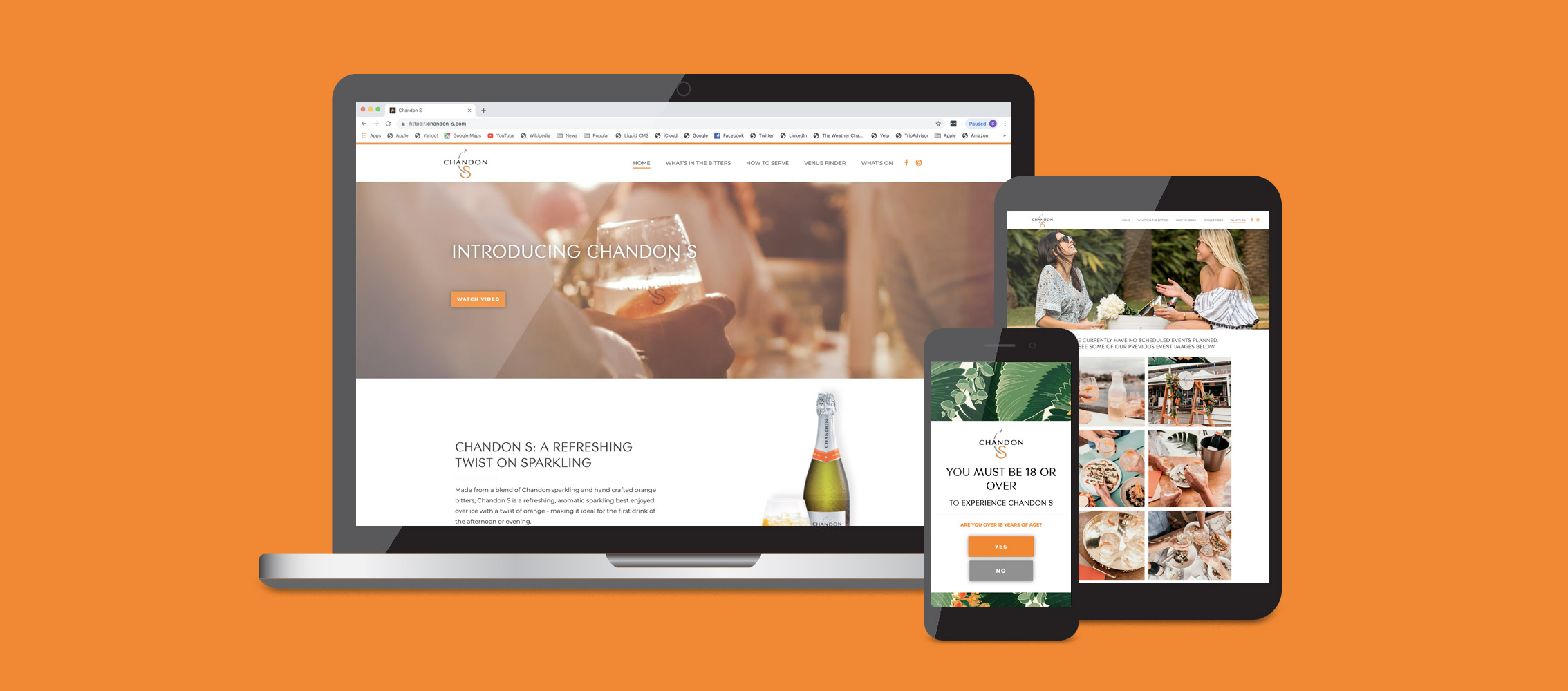 Chandon S Website Design